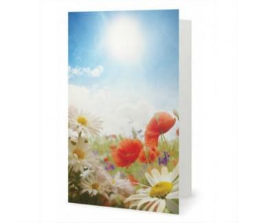 Les fleurs des champs carte de souhaits
