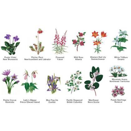 Guide des fleurs par Provinces Candiennes