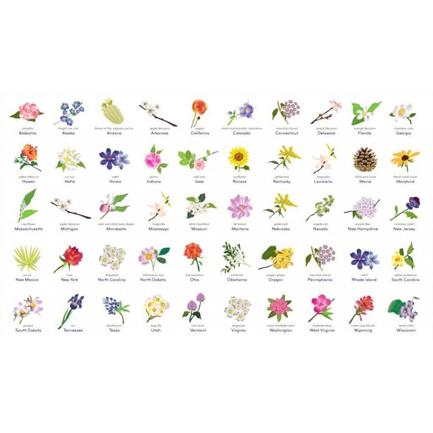 Guide des fleurs par États Américains